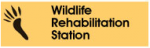 wildlife-rehab-station.png